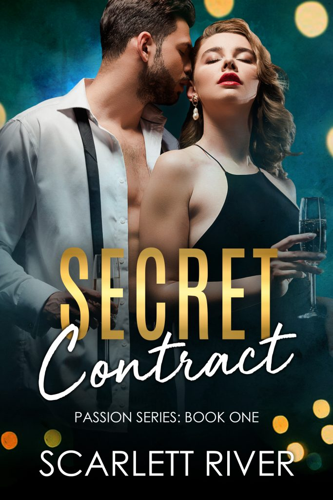 Secret Contract Book Cover